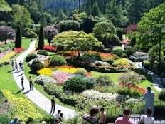 bushart_gardens/vancouver - Google Search