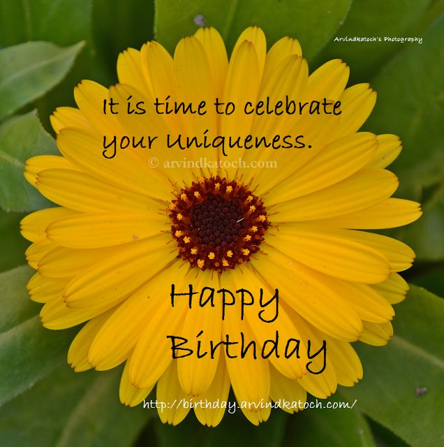 Beautiful Happy Birthday Card based on Yellow Flower