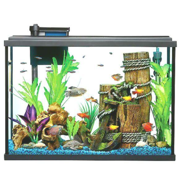 Top Fin Essentials Aquarium Starter Kit Starter Kit Fish Supplies Aquarium