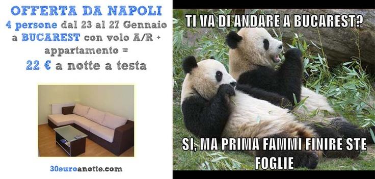 4 PERSONE A BUCAREST, volo A/R da Napoli + appartamento dal 23 al 27 Gennaio: 22 € a notte a testa!