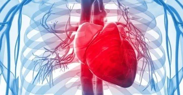عدم انتظام دقات القلب هو زيادة معدل ضربات القلب فوق 100 نبضة في الدقيقة وعادة ما تنشأ بسبب مواقف مثل التخويف أو التمارين البدنية الش Bonne Sante Sante Exercice
