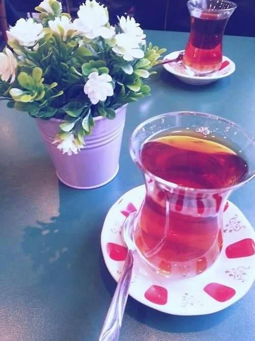 Hayat seni fazla Ciddiye almazken; Sen neyin telaşındasın ki? Bir baksana geçmişe, Senin Hangi işin kolay oldu ki ? Boşverrr, Hadi bir yudum daha çay al sıcak çayından. İçİni ısıtıcak Başka neyin kaldı ki..