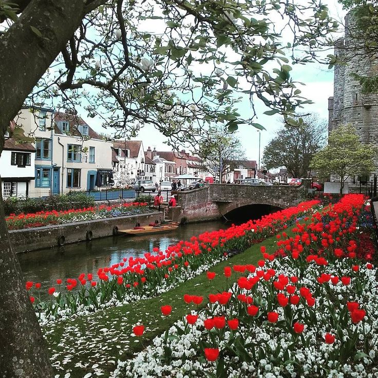The quaint city of Canterbury birthplace of Christopher Marlowe and home to one of the most famous cathedrals in the world #uk #tourism #beautiful #travel #canterbury #history