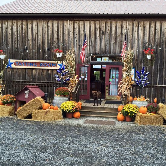Best Finger Lakes Wineries to Visit