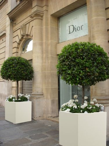 Artificial Plants Are Fast Becoming An Essential In Homes And Work Places  For Many Reasons Https