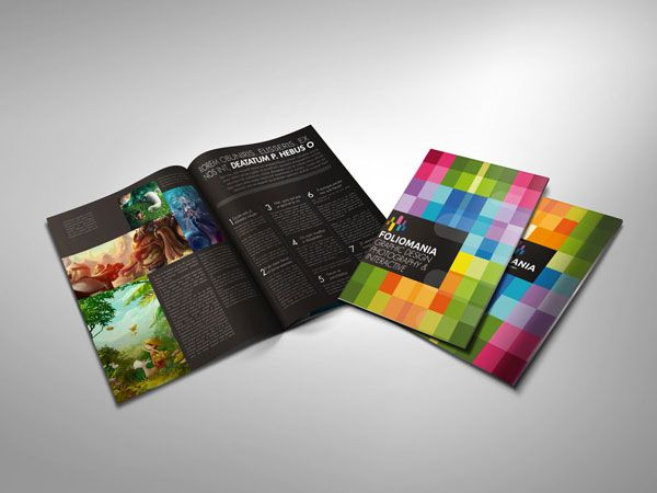 Foliomania designer portfolio brochure Print Design Inspiration
