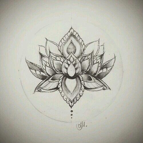Mooie lotus
