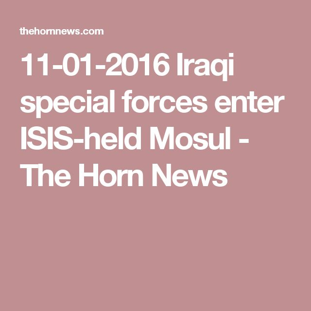 11-01-2016  Iraqi special forces enter ISIS-held Mosul - The Horn News