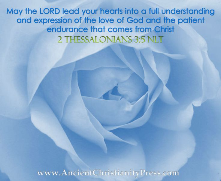 2 Thessalonians 3:5 NLT May the Lord lead your hearts into a full understanding and expression of the love of God and the patient endurance that comes from Christ!