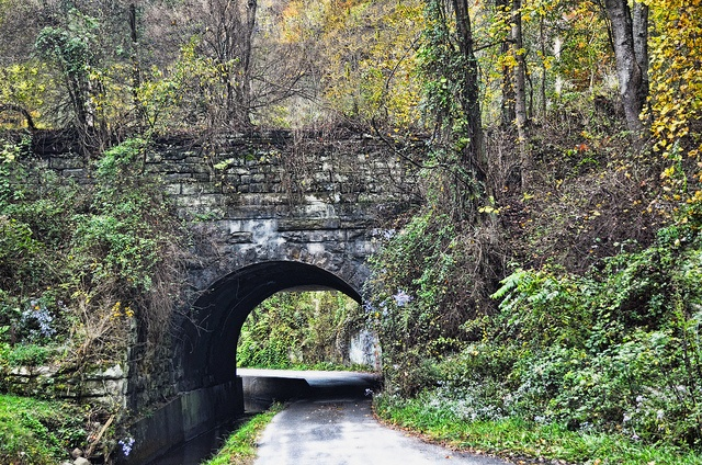 McDowell County, West Virginia  http://www.wvyourway.com/west_virginia/tourism.aspx