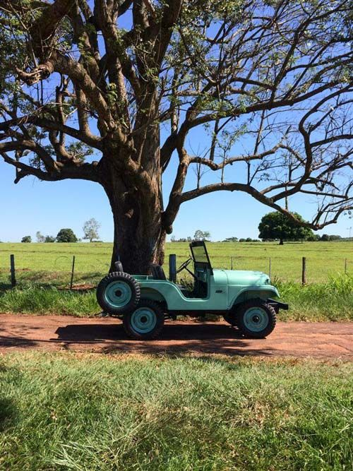 1959 Willys CJ-5 - Photo submitted by Jose Gilberto Alves Braga Jr.