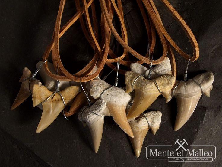 Ząb rekina na rzemyku - wisiorek