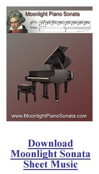 the piano sonata during the classical period Classical period (music) sonata form was also used in other movements and in single the basses were one octave below the cellos during the classical era, some composers began to give the double basses their own part which was different from the cello part.