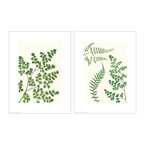 IKEA - TVILLING, Poster, set of 2, Motif created by Donna Bronson.You can personalize your home with artwork that expresses your style.