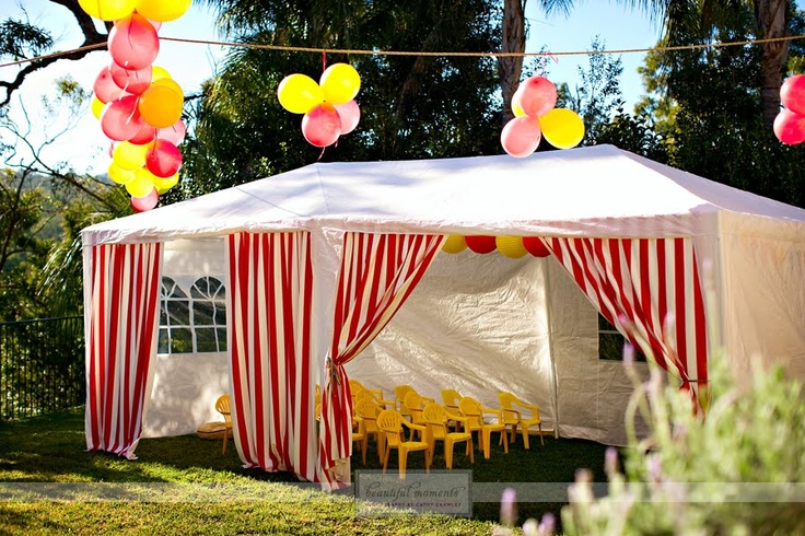 110 best images about carnival birthday ideas on pinterest carnival games birthdays and - Carnival theme party supplies ...