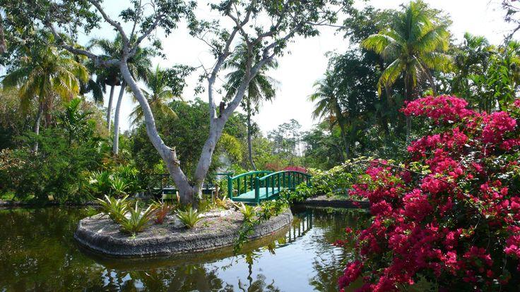 Freeport's Garden of the Groves http://www ...