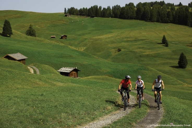 Biking in South Tyrol | Radfahren in Südtirol