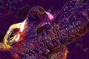 """New artwork for sale! - """" Jack Russell Dog Terrier Play Bite  by PixBreak Art """" - http://ift.tt/2tPedms"""