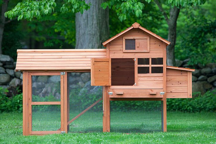602 best chicken coops images on pinterest chicken coops for How to buy a house cheap
