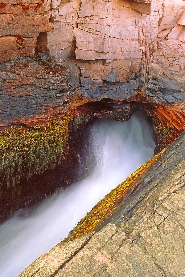 ✮ Water gushing out of Acadia's Thunder Hole in Acadia National Park in Maine