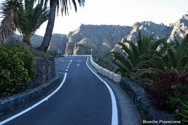 Gorges de Masca - Randonnée - Masca (Tenerife) - 8ème jour - Descente du village à la plage - Le 07 juin 2016. | Escapades Pyrénéennes et voyages