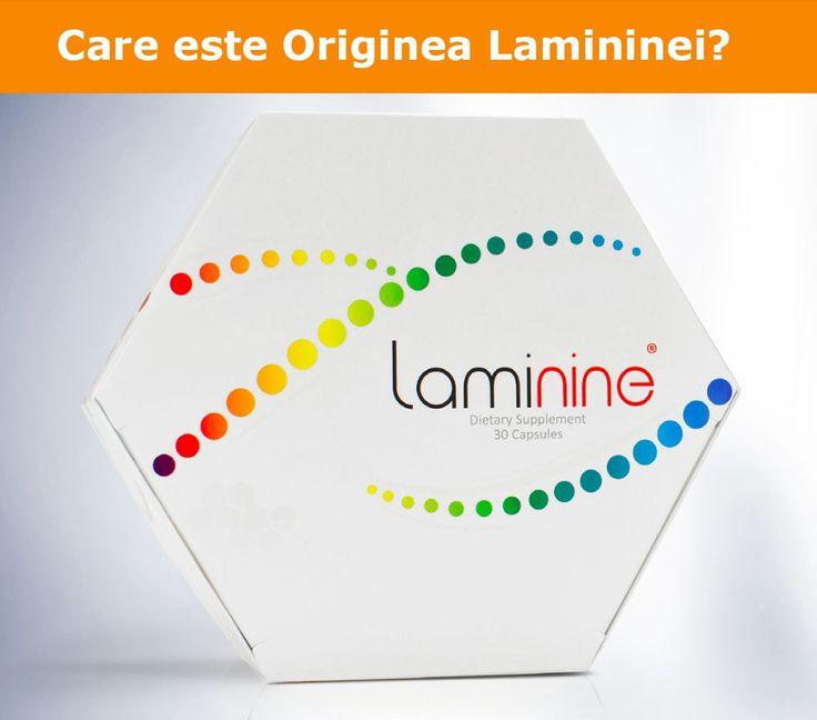 Care este Originea Lamininei?