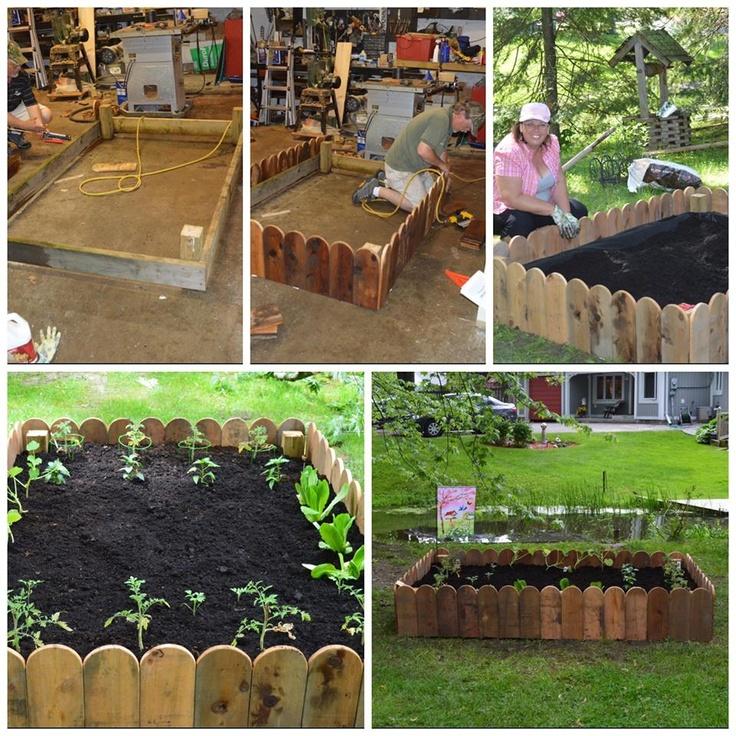 Raised vegetable garden.