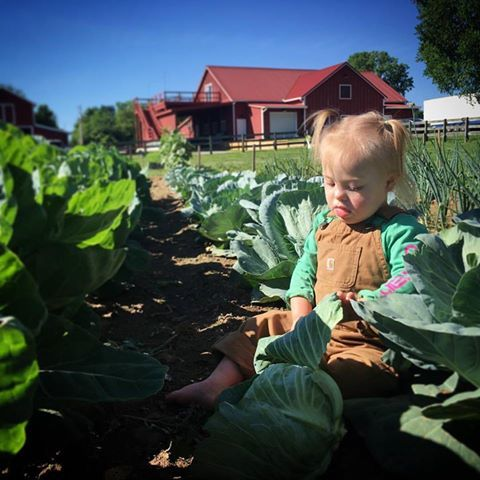 CABBAGE PATCH KID ! JOEY & RORY FEEKS BABY !!