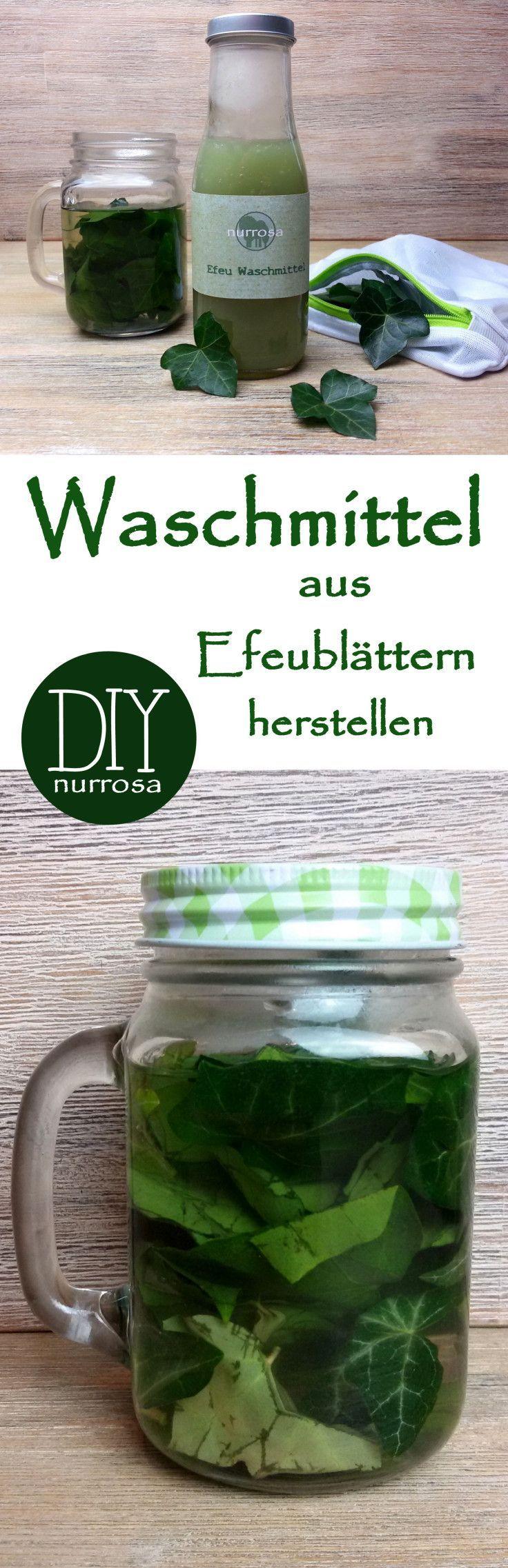 Waschmittel aus Efeublattern herstellen  DIY Anleitung  Haushalt plastikfrei