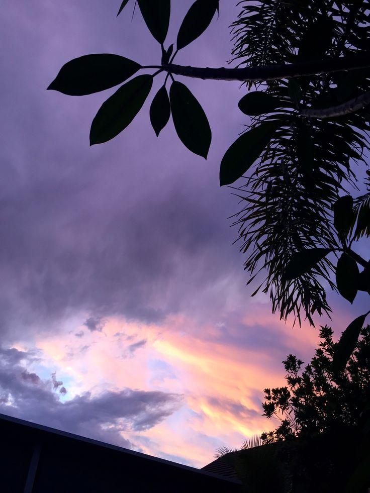 Purple sky ...