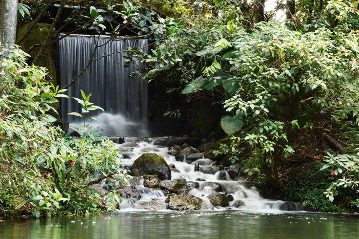 Jardín Botánico José Celestino Mutis #Destino #Bogotá
