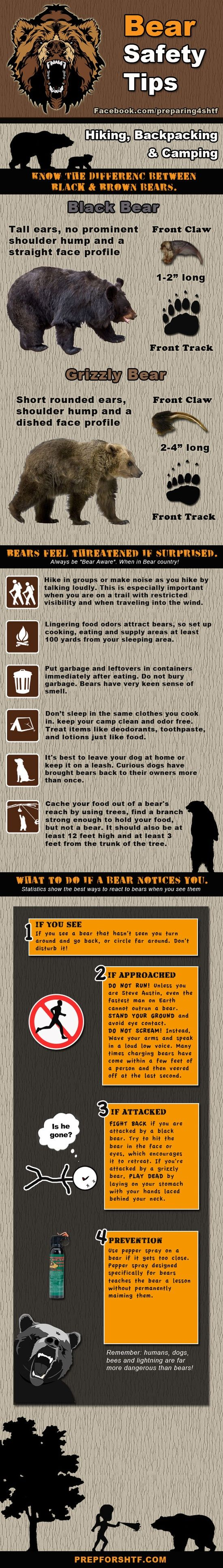 Bear Safety Tips - know the difference between black bears and grizzly bears;  if approached by a bear, DO NOT RUN and avoid eye contact;  if a black bear attacks, try to hit it in the face or eyes to get it to back off:  if a grizzly attacks, roll over and play dead