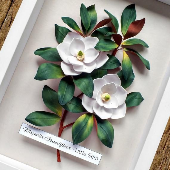 White Magnolia Flowers Botanical Illustration Wall Art White Green Decor Quilled Paper Magnolia Paper Wedding Anniversary Gift For Her Illustration Wall Art Paper Wedding Anniversary Gift Paper Flowers