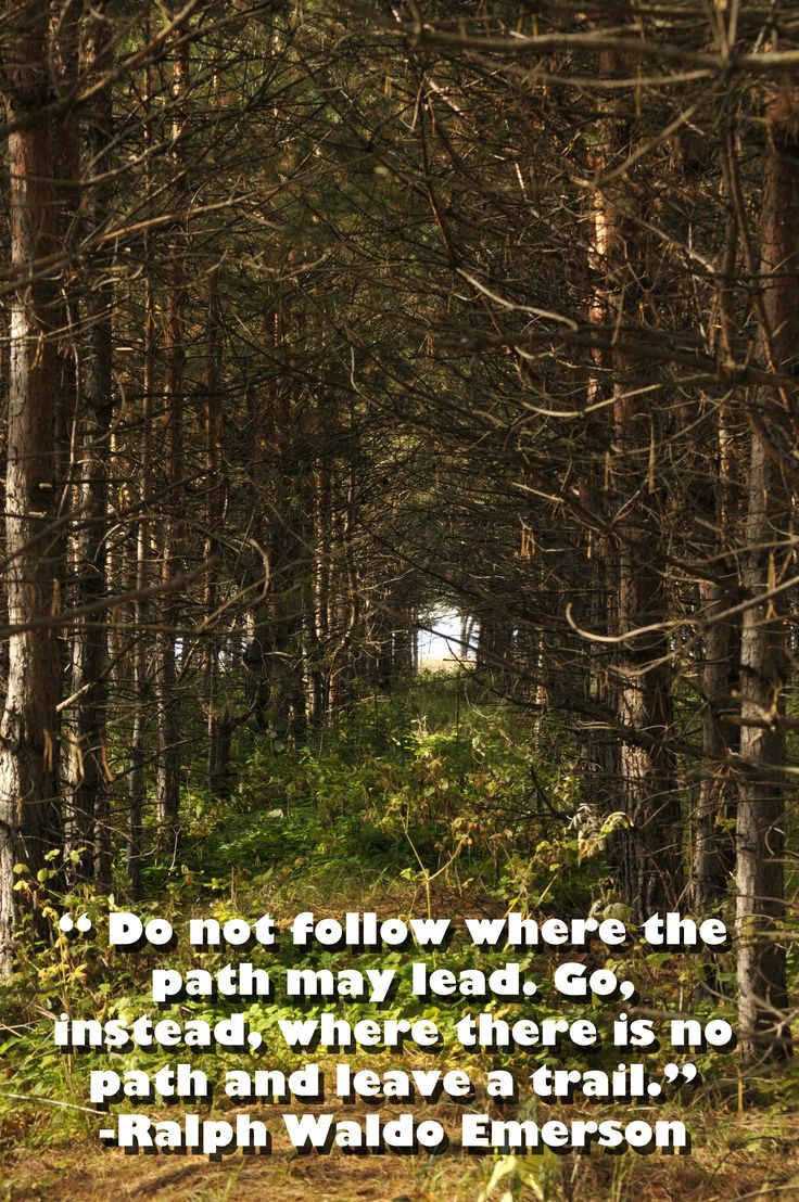 """""""Do no follow where the path may lead. Go, instead, where there is no path..."""" -Ralph Waldo Emerson #quoteoftheday"""