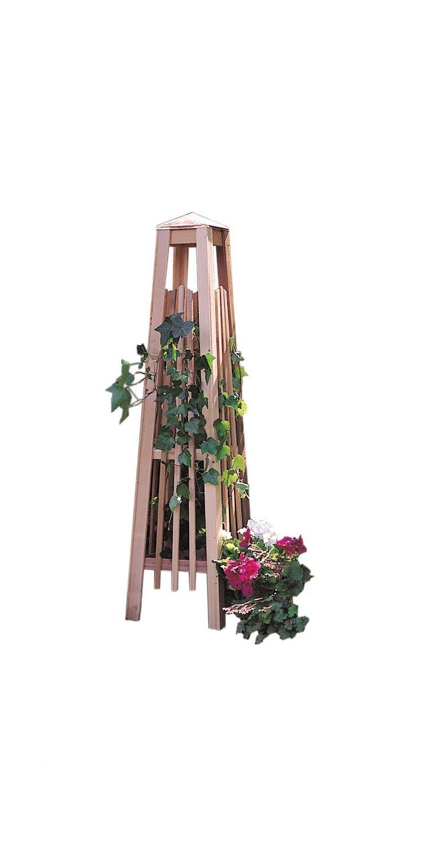 Exterior window trim ideas 2bwith vinyl siding - Exterior Window Trim Ideas 2bwith Vinyl Siding Manhattan Obelisk Trellis For Our Dying Mandovilla