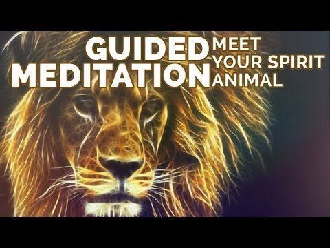 Meditation to Find Your Spirit Animal: What is My Spirit Animal? Relaxin...