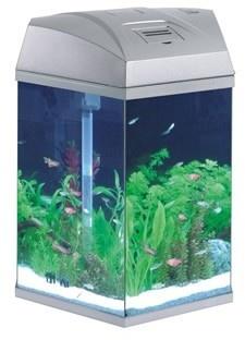 Hexagonal Fish Tank Silver 21.6 Litre    £39.99  FRF-555S hexagonal tank silver    Hexagonal aquarium silver, 33 x 30 x 43cm, holds 21.6 litres, with filter, hinged lid & 5watt energy saving bulb uses less power & environmental friendly.