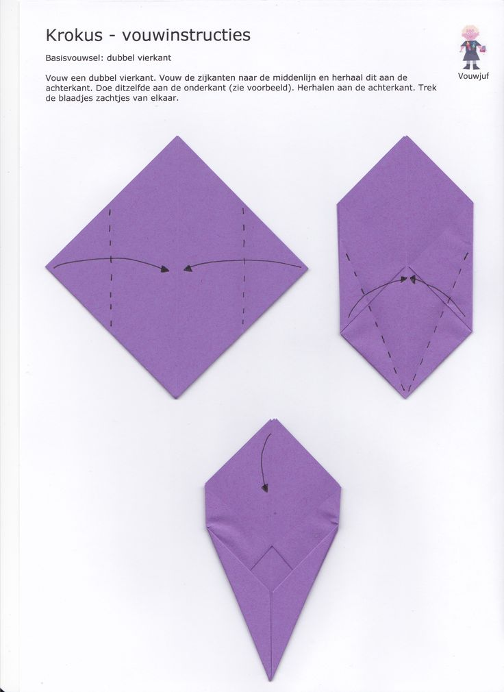 Krokus - vouwinstructies