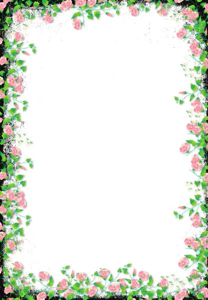 black flower png black transparent flower frame