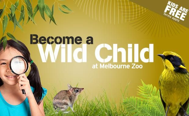 Become a Wild Child web620