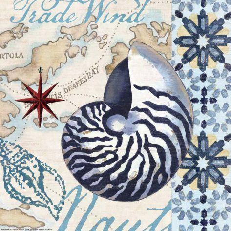 Trade Wind Nautilus Print by Jennifer Brinley at eu.art.com