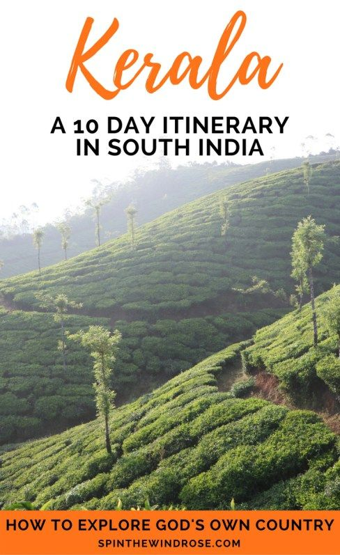 Her relaxed, slow pace, her lush green landscapes and her friendly local people make Kerala a must on your visit to India. Use this 10 Day Kerala Itinerary to help you plan your trip in South India.    Kerala | Itinerary | India | South India | Travel | spinthewindrose.com