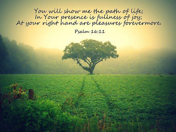 24 best Psalm Scripture Art images on Pinterest | Christian wall art ...