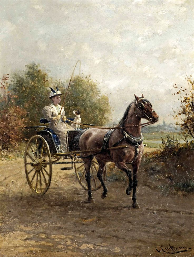 1216 best Historic Carriages images on Pinterest | Horse drawn, Vancouver and History facts