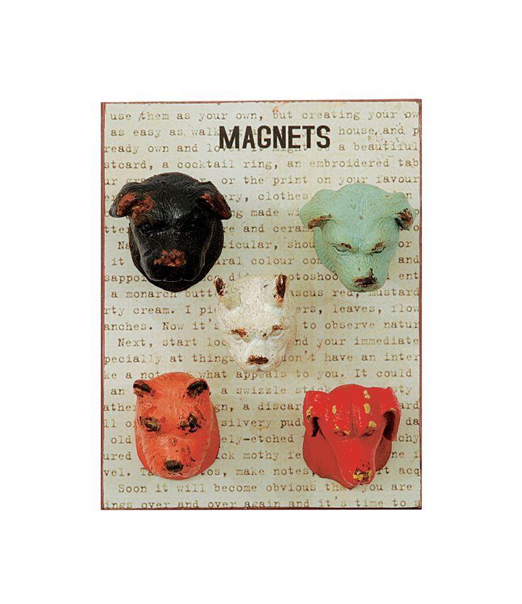 Neve Pewter Magnet Dog Heads Shapes Set of 5