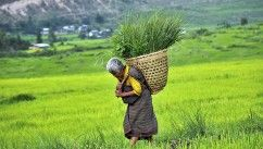 TINY HIMALAYAN COUNTRY BECOMES FIRST TOTALLY ORGANIC NATION. Perhaps you remember a nation that proclaimed gross domestic happiness was more important than gross domestic product? Well, the very same country, Bhutan, nestled in the Himalayan mountains, has decided to become the first 100% organic nation.
