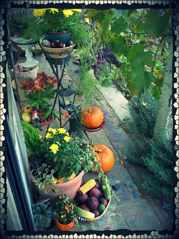 Entrance autumn decoration