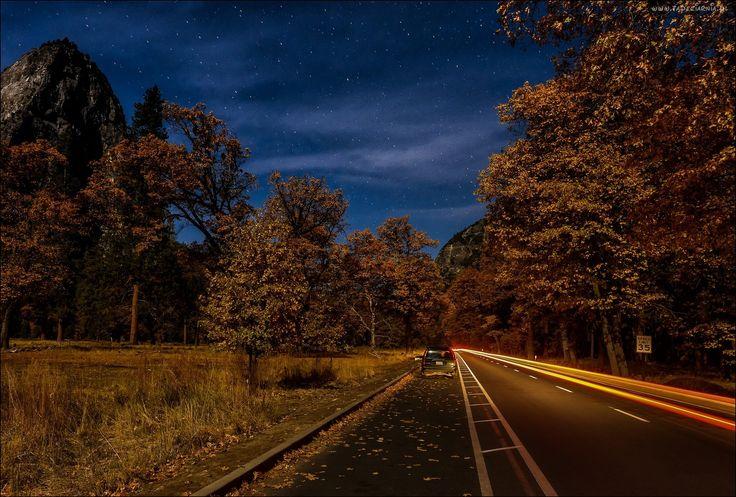 Jesień, Las, Droga, Samochód