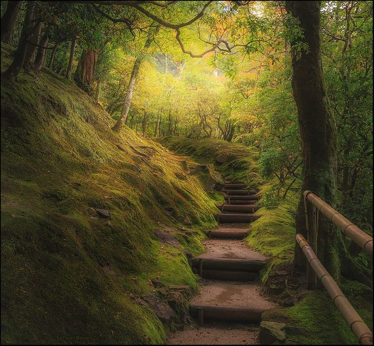 Stairs in japanese gardens of Ginkakuji, the silver pavilion. Kyoto, Japan. Photo by Pavel Minaev. National Geographic