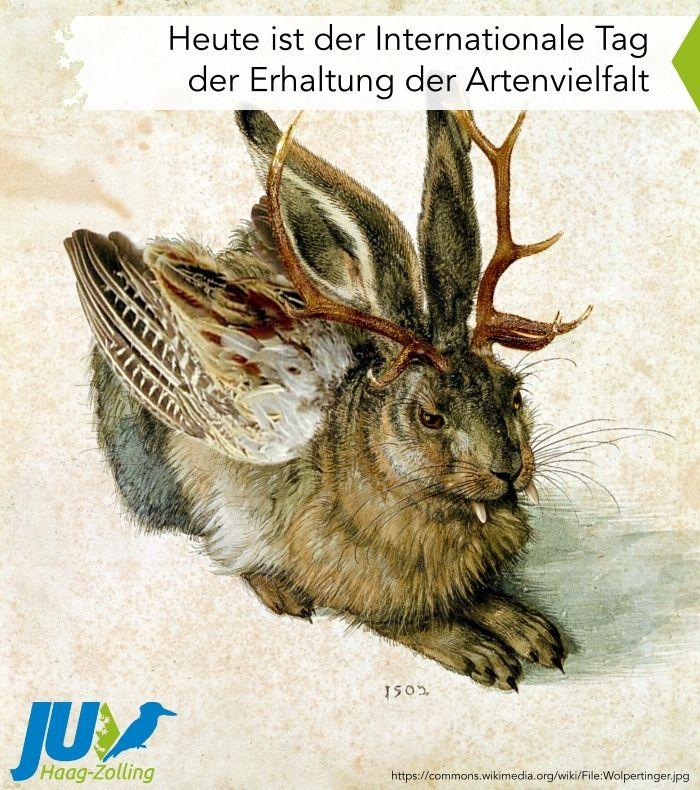 Rote Liste Gefahrdeter Arten Artenschutz Wolpertinger Tiere